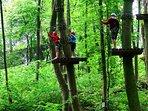 Adventures in the tree tops
