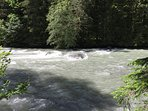 Nooksack River along side of Snowater Trail.