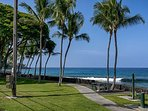 Pathway to Alii Drive!