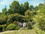 Pretty secluded garden
