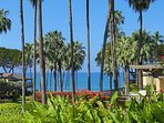 Your ocean view from our lanai (patio)