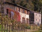 Casa Dell'Orto Holiday Rental Villa in Tuscany