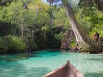 Caño Frio (cold river): a spring water river where to swim inside in Rincon Beach