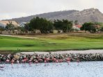 18-holes golfcourse; challenging to experience. We have 2 golfsets optional available (men/woman)