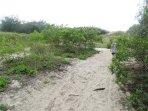 acesso a Praia do Moçambique