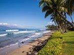 Beautiful beach at Puamana