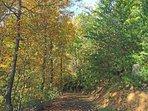Private Lane to Tiffany Ridge Cabin.