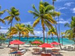 Hang out among the palm trees on the beach.