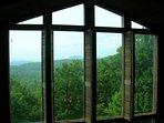 Living room windows.