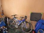 Bicicletas de adultos y niños a disposición