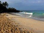 Magic Sands Beach right across the street!