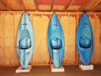 our kayaks, we also provide paddles and life jackets