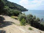 Villa ERIKA+VERPNICA. Vista dalla strada privata panoramica scendendo verso il mare.