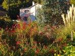 Maison aux volets verts face à grange en pierre et jardin d'agrément. Belle vue sur le vallon.