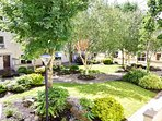 Back yard Courtyard