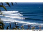 surfing heaven