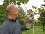 Falconry and archery just a few minutes drive away