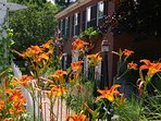 Federal House Inn - Tiger Lillies.