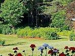 Federal House Inn - Back yard garden view.