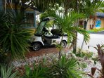 Free rides around the island on our golf cart
