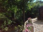 stream side garden
