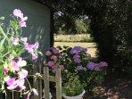 Garden Area 2