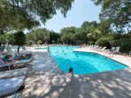 South Beach Pool included with Summer Rentals