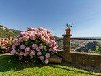 Great view on Forte dei Marmi....just 8 mins away!