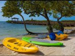Kayak and paddle board rentals available on site.
