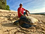 While walking on the beach a few meters from the house i saw this huge turtle