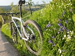 There are plenty of lovely footpaths and bridleways right on our doorstep