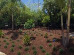 Rear Landscaping