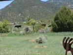 Panoramic mountain and horse / cow pasture views from kitchen / living great room