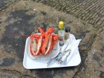 Lobster available from Crail harbour when in season.