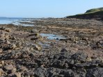 Amazing rock pools lay just beyond the sand beach.