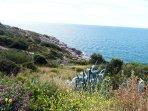 Desde la zona natural de la Punta del Cavall hay una ruta fácil de senderismo hasta Cala Crancs.