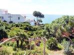 El jardín lo creó y lo cuida un vecino francés que viene todos los años a pasar sus vacaciones :)