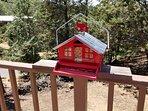 Julian Cabin Deck Bird Feeder