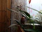 outdoor bathroom with bamboo doors