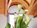 Residence Domaso, two-bedroom apartment, the flower's details.