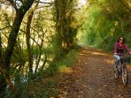 Cycle the Camel Trail from Butterwell
