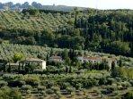 Vista  su Casa del Gallo, il complesso dove si trova appartamento Belvedere.