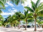 Paradise Beach Gardens