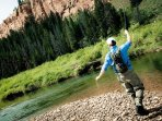 Fly fish, hike, mountain bike, river raft, golf, ski, horse ride or just relax! Just Beautiful