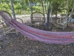 Take a quick nap in the hammock.