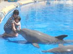 Swim with the dolphins at Aqualand.