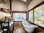 Master bathroom soaking tub with a view!