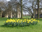 Springtime in the Abbey grounds.