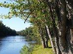 200 feet of river bank along the Muskegon River