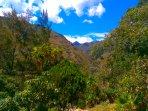 Upvalley view -  Cabañas Río Yambala - Vilcabamba